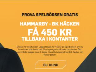 hammarby hacken riskfritt spel